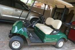 Golf cart Yamaha + tilt trailer