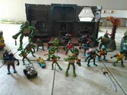 Ninja turtle collection