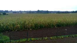 Kitale one acre for sale prime for a home
