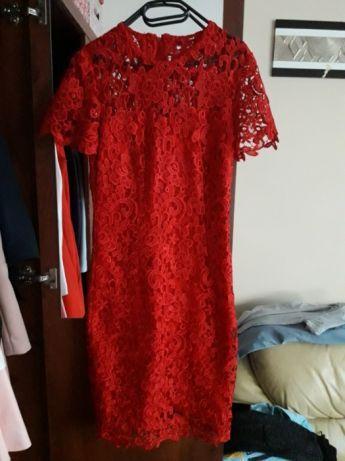 sukienka zara czerwona w panterkę za kolano olx