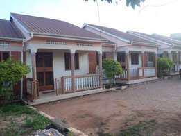 Amazing 2bedrooms 1bathrooms house for rent in Bunga at 400k