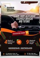 Professional Driving Academy