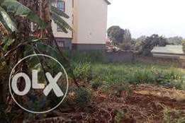 mwimuto kinoo 1/8 plot on sale 3 row from the tarmac