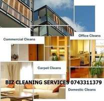 Proffesional Carpet cleaning in Gauteng, Rugs, Tiles and Couches