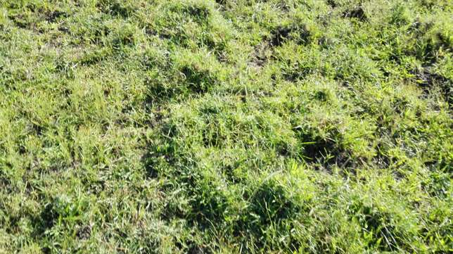 30 acres for sale in ongata rongai Ongata Rongai - image 2