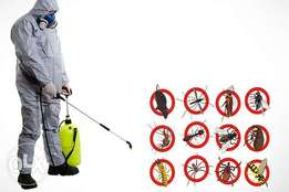 Fumigation and Pest Control Companies in Lagos