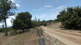 One Acre nanyuki laikipia