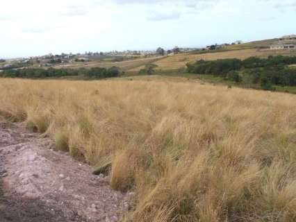 Land Available in Adams Illovo Beach - image 1