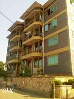 Executive apartment two bedroom two bathroom house for rent in kisaasi