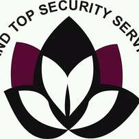Island Top Security Services