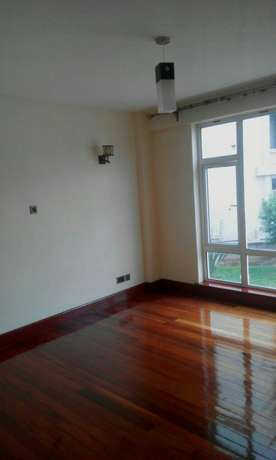 Executive 3 bedrm plus sq apt for rent in riverside drive Kileleshwa - image 7