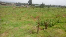 1/8 arce plots for sale at outspan jasho area in eldoret.