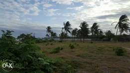 1acre for sale beach plot kikambala