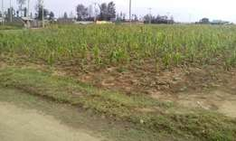 Plot for sale in Pipeline imperial
