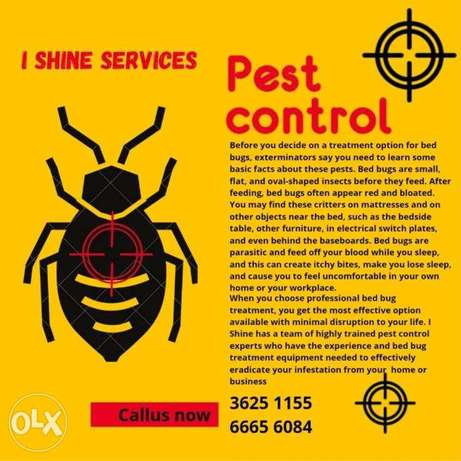 Pest control services in Bahrain