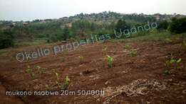 Titled plots of 50ft by 100ft in mukono nsambwe at 20m