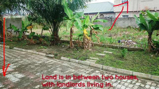 A freehold plot of land for sale Amuwo Odofin - image 4