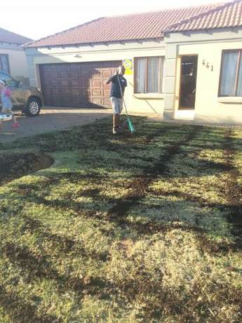 garden maintenance, landscaping and supplies Emalahleni - image 5