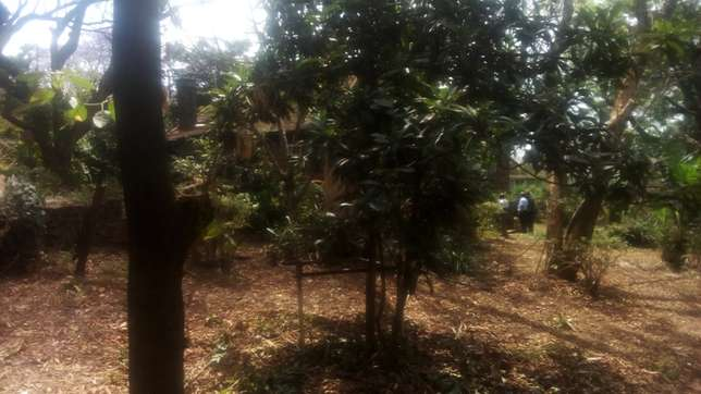 upper hill 0.877 acres with un old bungalow Kilimani - image 2