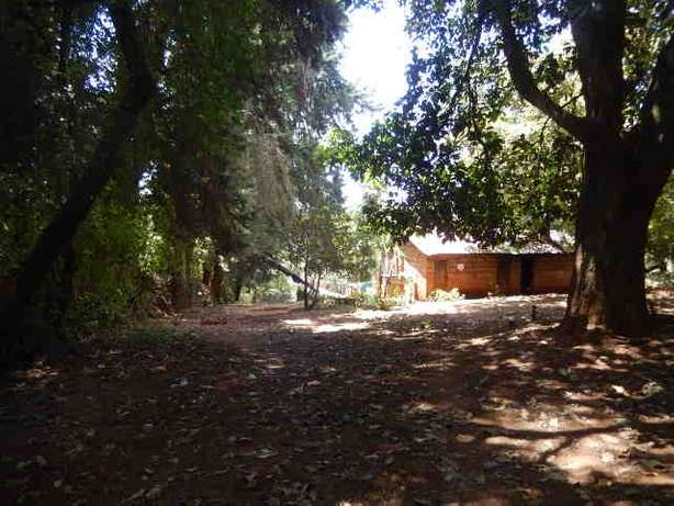 Tigoni 2 Acres Near Birthday Road Nairobi CBD - image 7