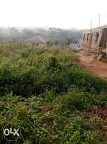 A half plot of of land with all doc at mowokekere ,ikorodu