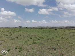 14 acres of Land for sale in Kiserian