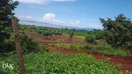 3squaremiles of land on sale in Kayunga-bale each acre is at 2,5m