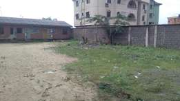 2 bedroom flat and a mini flat set back on a full plot at Igboelerin.