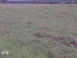 "Prime 50"" x 100"" plots for sale along Kang'undo road with ready titles"