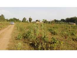 Private Mailo land in Nakasongola for sale 2.3m