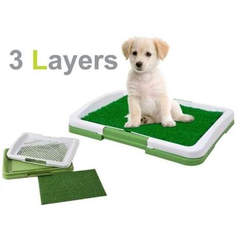Puppy Potty Pad! Sunridge Park - image 2