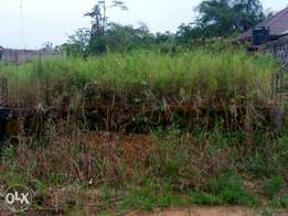 Land for sale at shell road sapele