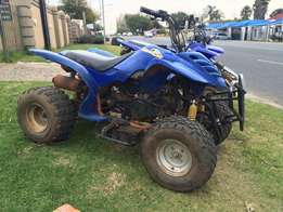 Dune Cat 150cc quad bike
