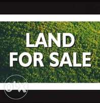 FOR SALE 1 and half plots of land fence compound at igbo-Eche road PH.