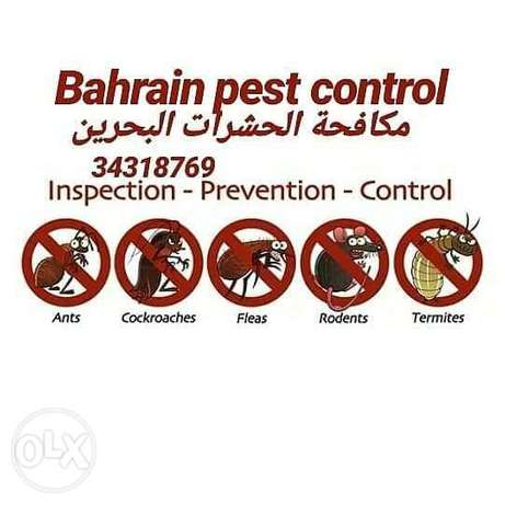 Bahrain pest control spray and medicines