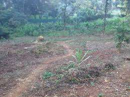 Land 0.85 acre for sale in Westlands