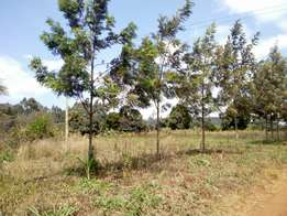 4500 and 300 acres for sale in subukia ksh 350,000pa