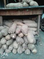 Yam for sell. Prices range from 300, 500, 600, 800.