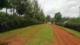1/8 plot at kapseret with title