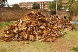 Firewood from Indigenous Hardwood