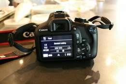 Brand New canon Rebel T6 with all accessories