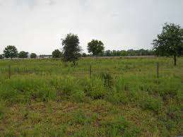 Beautiful well located commercial/residential half acre plot for sale