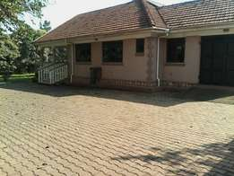 Four bedrooms banglow for rent in naguru on 50decimals with Serene far