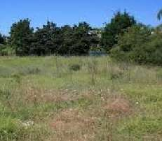 34 Acres Runda Ksh. 58M/Acre