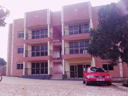 Anxious 2 bedroom 2 baths house for rent in Kansanga at 700k