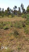Plot for sale in THIKA GREENS PHASE 3