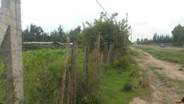 1.25acres in Gatheri, Nanyuki,fronting a tarmac road