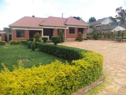 Juicy fully furnished double for rent in Kisaasi at 600k
