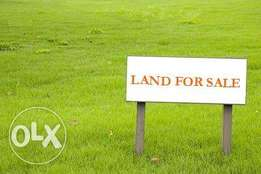 1100sqm along Nkpokiti Road, Close To Imt Gate, Independence Layout