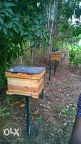 Technological bee keeping equipment and services